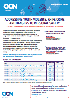 Youth Violence Qualifications